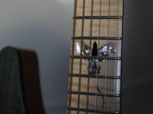 Magpie – Lintuaiheinen custom kitara galleria kuva #2